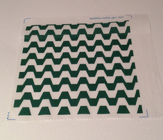Rtrapezium_in_green_and_white.ai_comment_226508_thumb