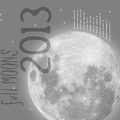 Rrmoon_tea_towel_02-02_side_shop_thumb