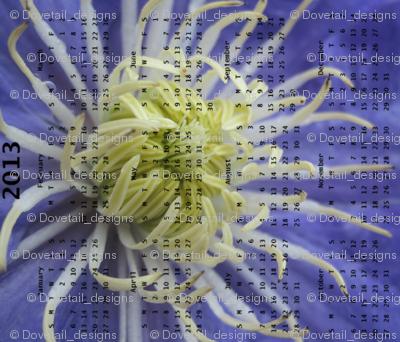 2013 Calendar -Flowers - Blue & White Spider Chrysanthemums