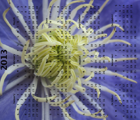 2013 Calendar -Flowers - Blue & White Spider Chrysanthemums