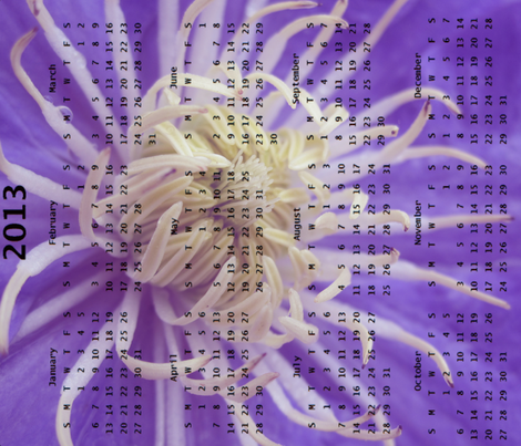 2013 Calendar - Flowers - Purple Spider Chrysanthemums fabric by dovetail_designs on Spoonflower - custom fabric