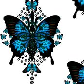 Rfrench_butterfly_shop_thumb