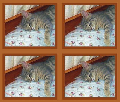 Rzippy_sleeping_31814_resized_shop_preview