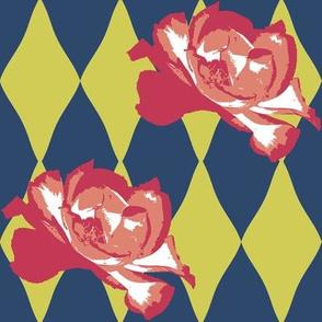 Nasher Roses