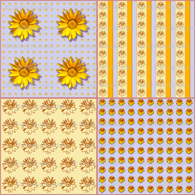 Sunflower2 Coordinate