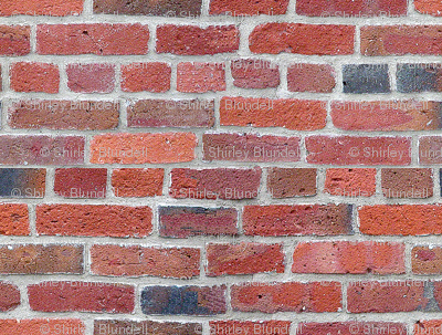 Old Brick Wall -biggest_