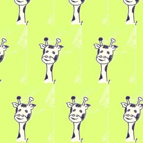 gerard the giraffe on limegreen