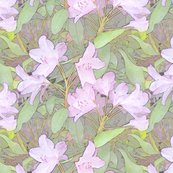 Rhododendron_shop_thumb