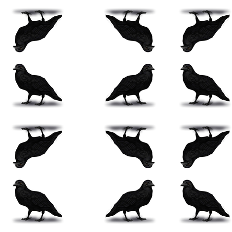 American Crow fabric by boneyfied on Spoonflower - custom fabric