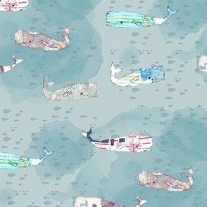 blue whale pod