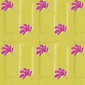 Matisse Scatter