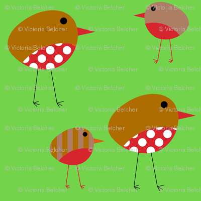 Birds - Christmas Robins