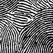 Rrfingerprint_shop_thumb