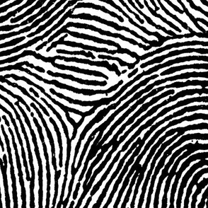 Fingerprint stripes black &amp; white