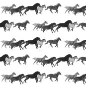 Rrrgalloping_herd_isolated_shop_thumb