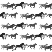 Galloping Horse Herd black and white watercolor