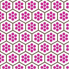 FlowerNhoneycomb-purchased