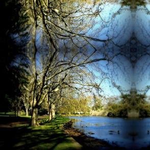 Park w blur