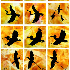 Sunset_Birds_Range