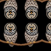 Rblack_owl_shop_thumb