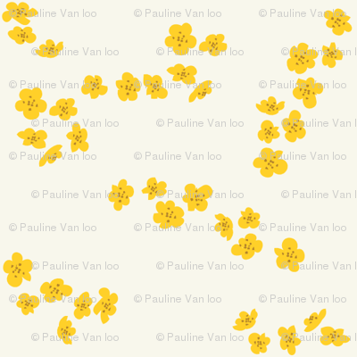 Yellow plum blossom on white