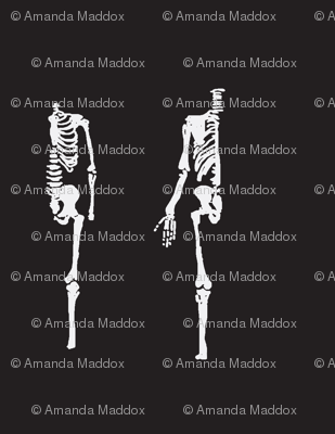 skeletonreverse