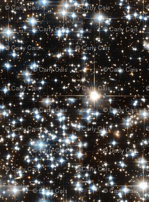 Sparkle Star Field