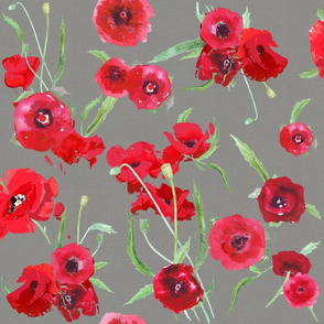 poppies on canvas