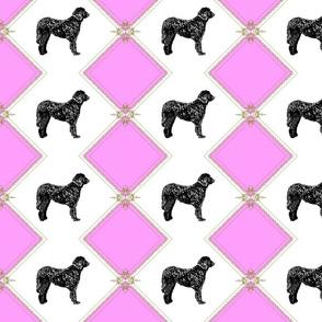 Pink Chloe
