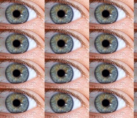 Cool Eye fabric by lindahandley-newton on Spoonflower - custom fabric