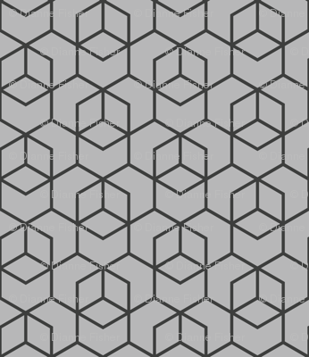 Hexagon trellis - charcoal on grey