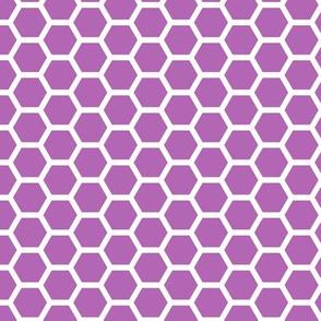 Hive - Purple