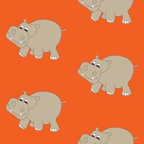 Hippo-Orange