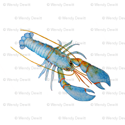 Blue Lobster (small)