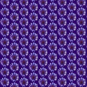 Cornflower (xs)