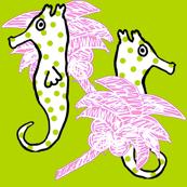 Seahorse Fan Dance