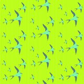 Rrbirds3_shop_thumb