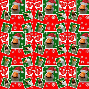 Sebastopol Goose HOLIDAY Wrapping Paper Gift Wrap