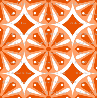 Sliced Citrus Orange