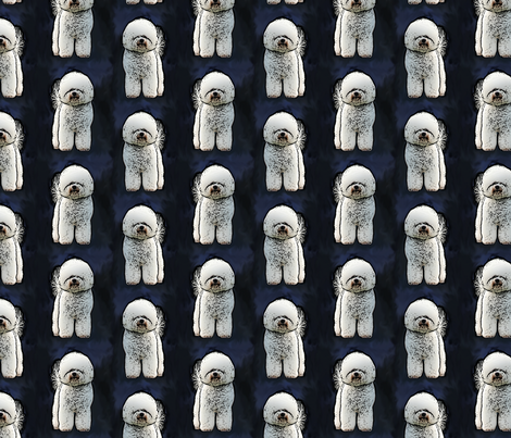Posing Bichon Frise - blue fabric by rusticcorgi on Spoonflower - custom fabric