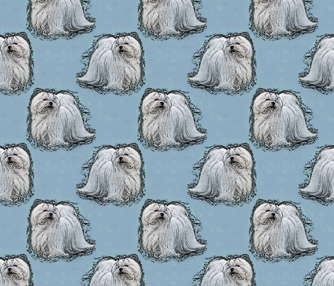 Posing Maltese - blue fabric by rusticcorgi on Spoonflower - custom fabric