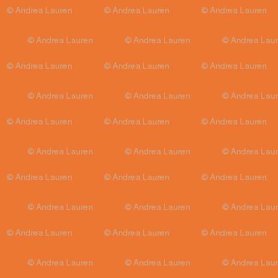 Orange Coordinate by Andrea Lauren