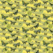 Rvintage_butterfly_flight_yellow_shop_thumb