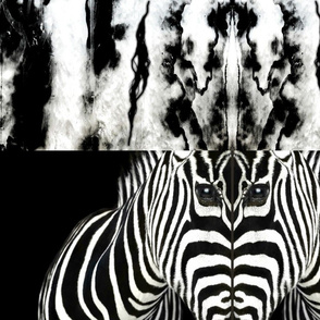 The huntsman zebra