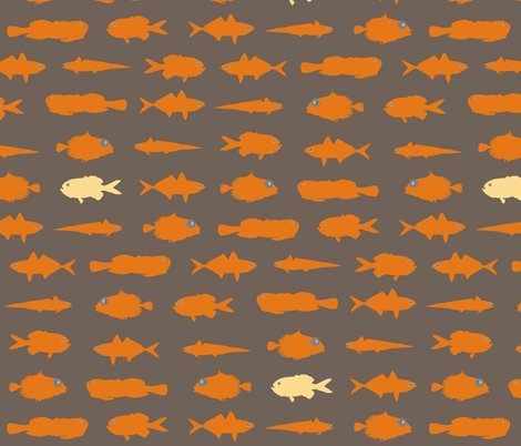 Rorange_fish._shop_preview