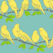 Rbirds_on_branch2_shop_thumb