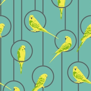 Yellow Budgies
