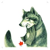Rgrey_wolf_pillow_shop_thumb
