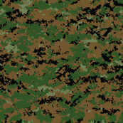 Marine MARPAT Digital Woodland Camo