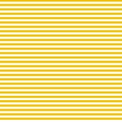 Stripesgoldenyellow_shop_thumb